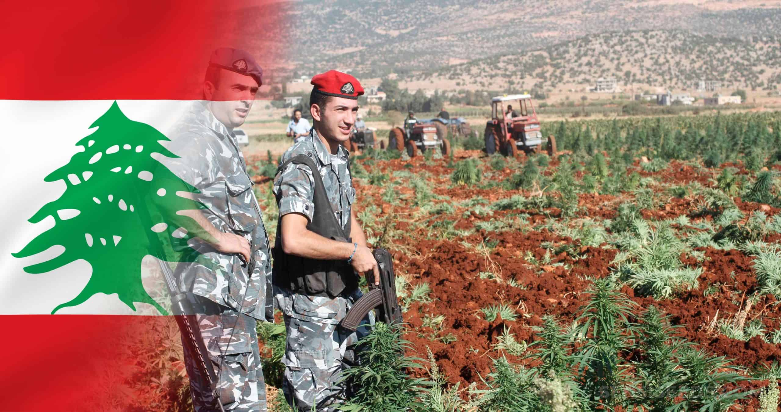 Lebanon Legalizes Medical and Industrial Cannabis Production
